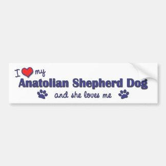 Amo mi perro de pastor de Anatolia (el perro femen Pegatina De Parachoque