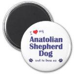 Amo mi perro de pastor de Anatolia (el perro mascu Iman De Frigorífico