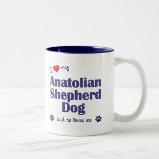 Amo mi perro de pastor de Anatolia (el perro mascu Tazas