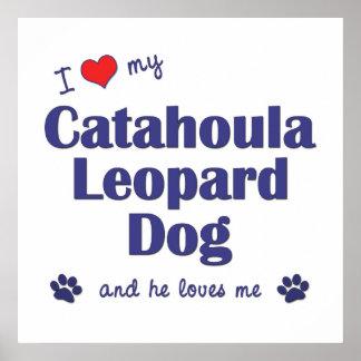 Amo mi perro del leopardo de Catahoula (el perro m Póster