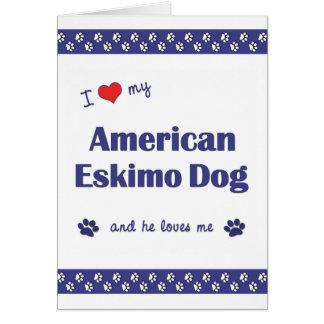 Amo mi perro esquimal americano (el perro masculin tarjeta pequeña