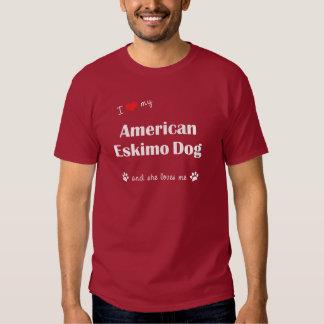 Amo mi perro esquimal americano (el perro polera