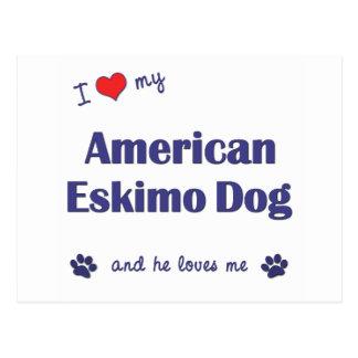 Amo mi perro esquimal americano (el perro postales