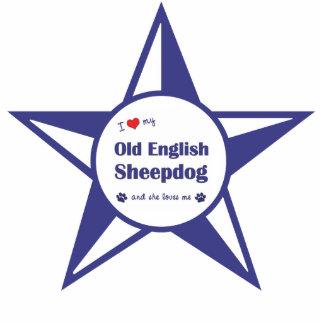 Amo mi perro pastor inglés viejo (el perro femenin esculturas fotográficas