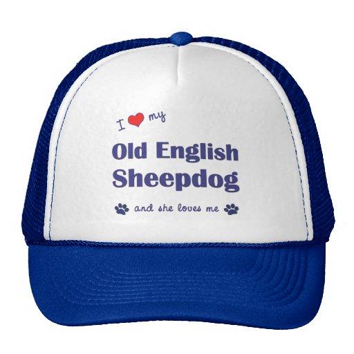 Amo mi perro pastor inglés viejo (el perro femenin gorro