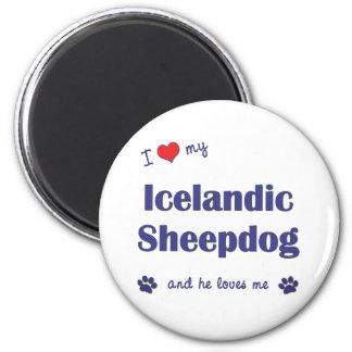 Amo mi perro pastor islandés (el perro masculino) imán redondo 5 cm