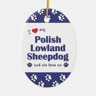 Amo mi perro pastor polaco de la tierra baja (el adorno ovalado de cerámica