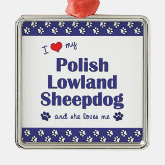 Amo mi perro pastor polaco de la tierra baja (el adorno cuadrado plateado