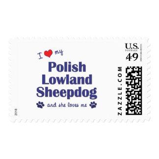 Amo mi perro pastor polaco de la tierra baja (el sellos postales
