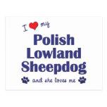 Amo mi perro pastor polaco de la tierra baja (el postal