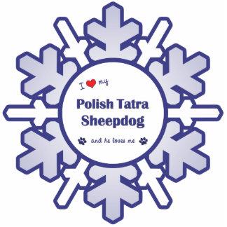 Amo mi perro pastor polaco de Tatra (el perro masc Escultura Fotográfica