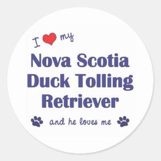 Amo mi perro perdiguero tocante del pato de Nueva Pegatina Redonda