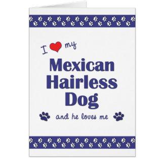 Amo mi perro sin pelo mexicano (el perro masculino tarjeta pequeña