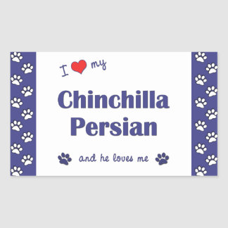 Amo mi persa de la chinchilla (el gato masculino) pegatina rectangular