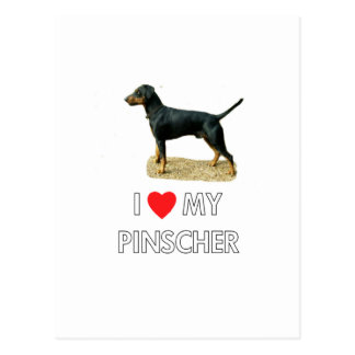 Amo mi Pinscher Postal