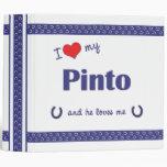 Amo mi Pinto (el caballo masculino)