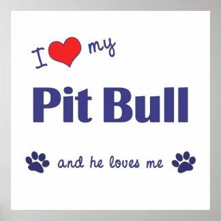 Amo mi pitbull (el perro masculino) póster