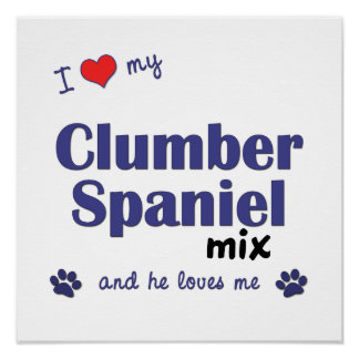 Amo mi poster de la mezcla del perro de aguas de C
