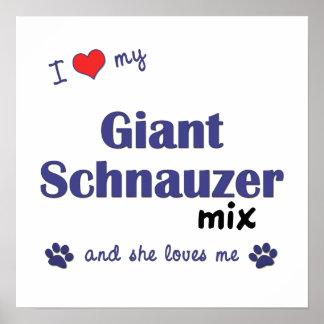 Amo mi poster de la mezcla del Schnauzer gigante