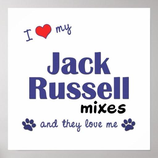 Amo mi poster de las mezclas de Jack Russell (perr