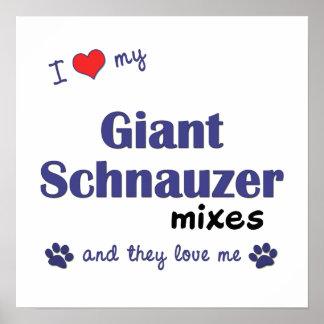 Amo mi poster de las mezclas del Schnauzer gigante