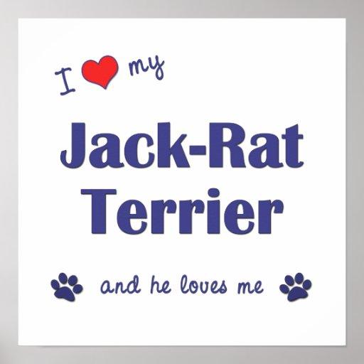Amo mi poster de Terrier de la Jack-Rata (perro ma