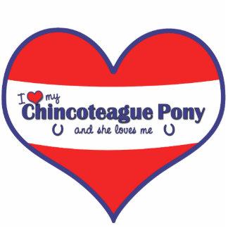 Amo mi potro de Chincoteague (el potro femenino) Fotoescultura Vertical