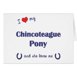Amo mi potro de Chincoteague (el potro femenino) Tarjeta De Felicitación