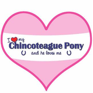 Amo mi potro de Chincoteague (el potro masculino) Fotoescultura Vertical