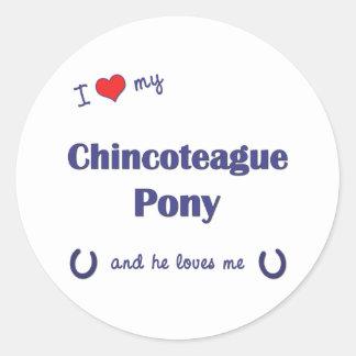 Amo mi potro de Chincoteague (el potro masculino) Pegatina Redonda