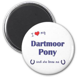 Amo mi potro de Dartmoor (el potro femenino) Imán Para Frigorifico