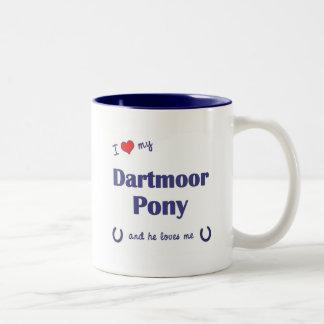 Amo mi potro de Dartmoor (el potro masculino) Taza