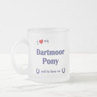 Amo mi potro de Dartmoor (el potro masculino) Tazas De Café
