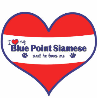 Amo mi punto azul siamés (el gato masculino) adorno fotoescultura