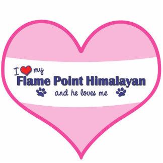 Amo mi punto de la llama Himalayan (el gato mascul Escultura Fotografica