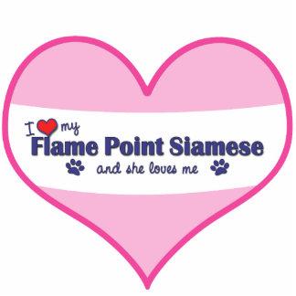 Amo mi punto de la llama siamés (el gato femenino) escultura fotográfica