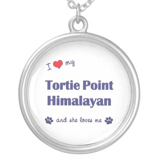 Amo mi punto de Tortie Himalayan (el gato femenino Grimpola