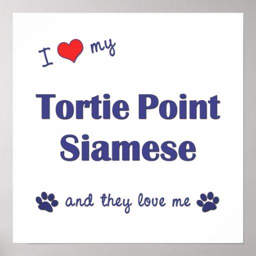 Amo mi punto de Tortie siamés (los gatos múltiples Posters