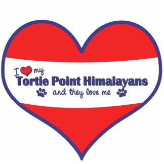 Amo mi punto Himalayans (los gatos múltiples) de T Adorno Fotoescultura