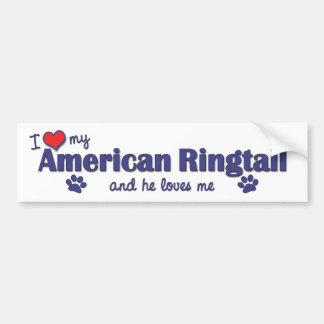 Amo mi Ringtail americano (el gato masculino) Pegatina Para Auto