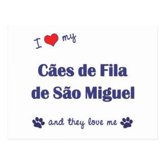 Amo mi sao Miguel (los perros multi) de Caes de Tarjeta Postal