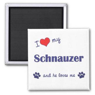 Amo mi Schnauzer (el perro masculino) Imán Cuadrado