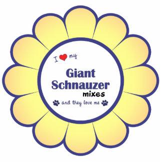 Amo mi Schnauzer gigante me mezclo los perros múl Esculturas Fotográficas