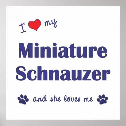 Amo mi Schnauzer miniatura (el perro femenino) Impresiones