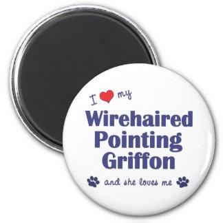 Amo mi señalar Griffon Wirehaired (el perro femeni Iman De Nevera