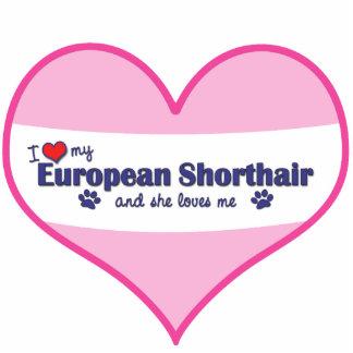 Amo mi Shorthair europeo (el gato femenino) Adorno Fotoescultura
