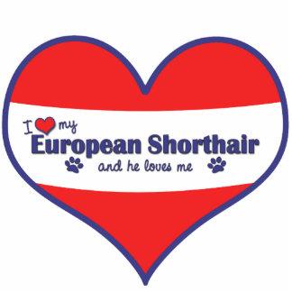 Amo mi Shorthair europeo (el gato masculino) Adorno Fotoescultura