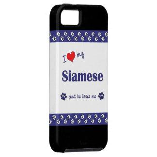 Amo mi siamés (el gato masculino) iPhone 5 carcasas