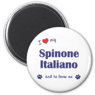 Amo mi Spinone Italiano (el perro masculino) Iman De Frigorífico