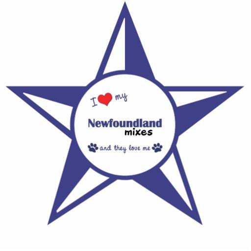 Amo mi Terranova me mezclo (los perros múltiples) Esculturas Fotográficas
